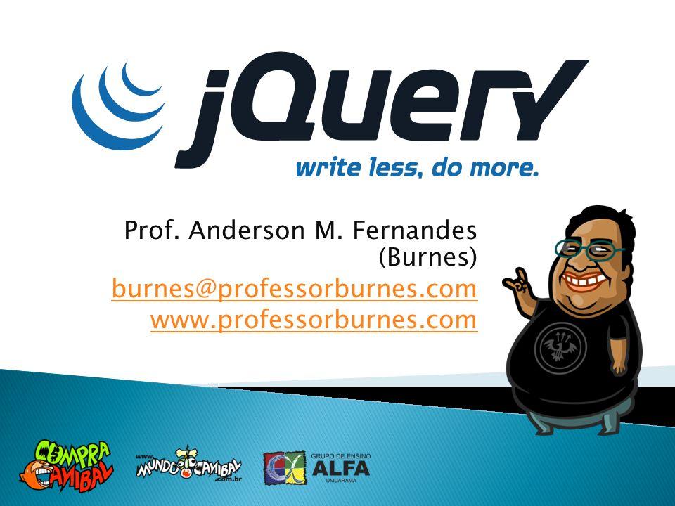 Prof. Anderson M. Fernandes (Burnes)