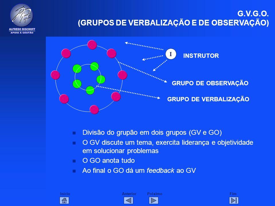 G.V.G.O. (GRUPOS DE VERBALIZAÇÃO E DE OBSERVAÇÃO)