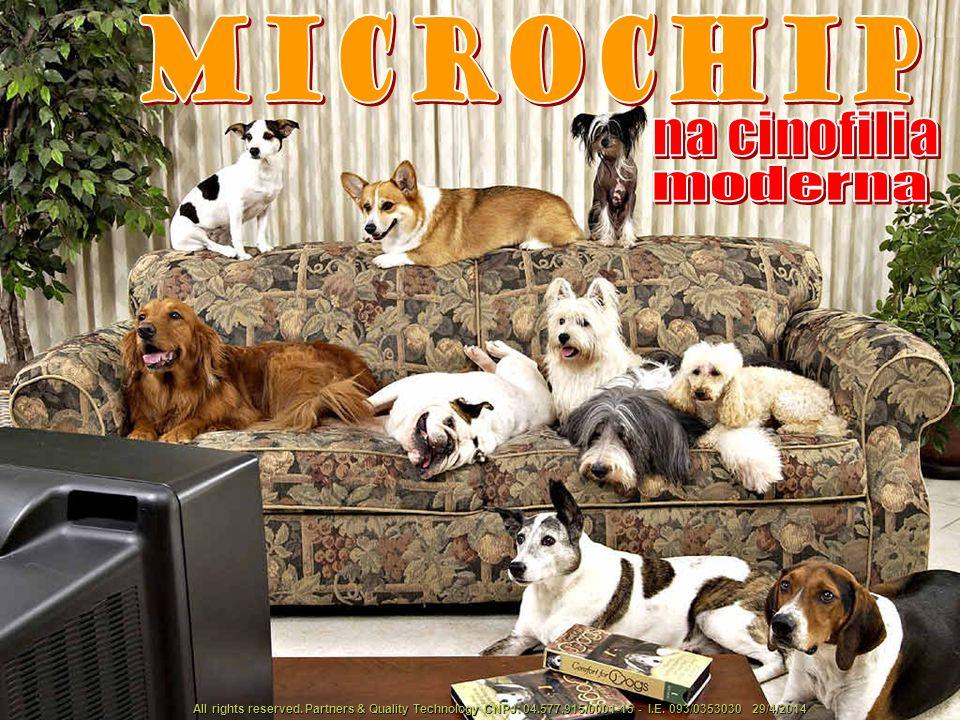 na cinofilia moderna Microchip