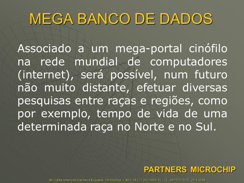 MEGA BANCO DE DADOS