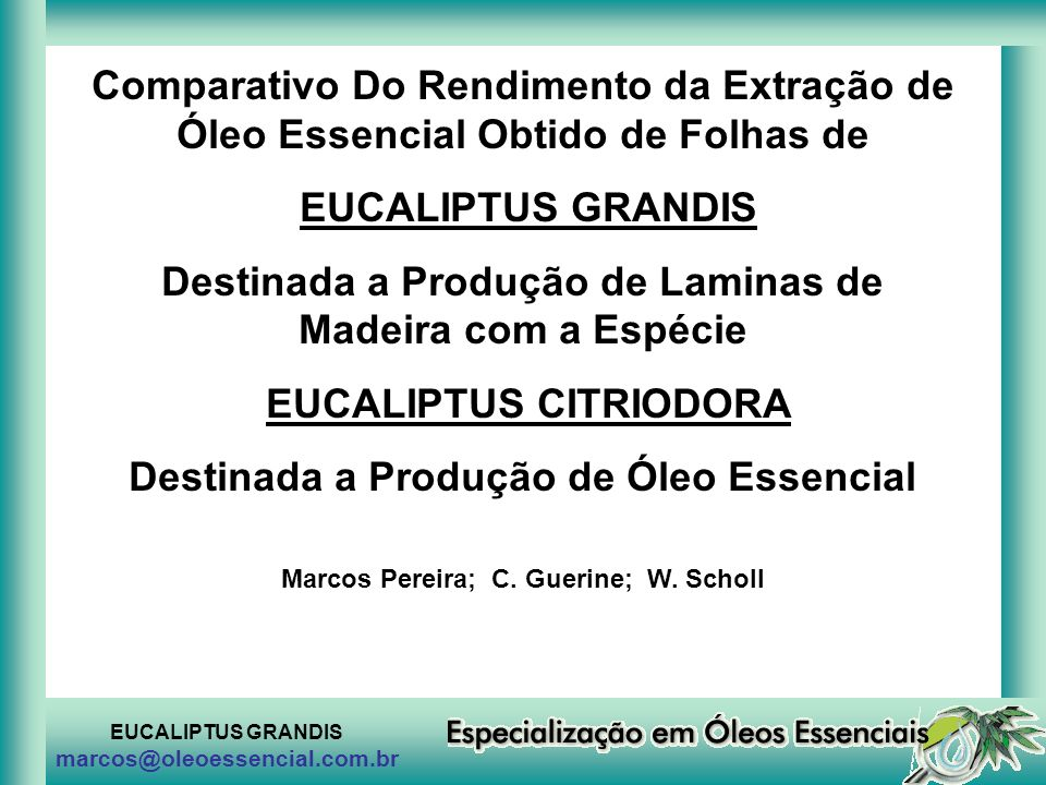 Destinada a Produção de Laminas de Madeira com a Espécie