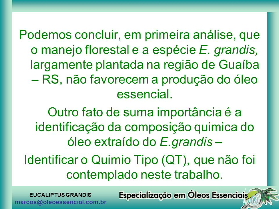 Podemos concluir, em primeira análise, que o manejo florestal e a espécie E. grandis, largamente plantada na região de Guaíba – RS, não favorecem a produção do óleo essencial.