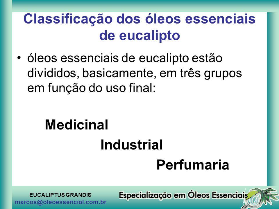 Classificação dos óleos essenciais de eucalipto