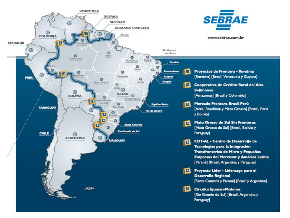 Atuação do SEBRAE – Processo de internacionalização