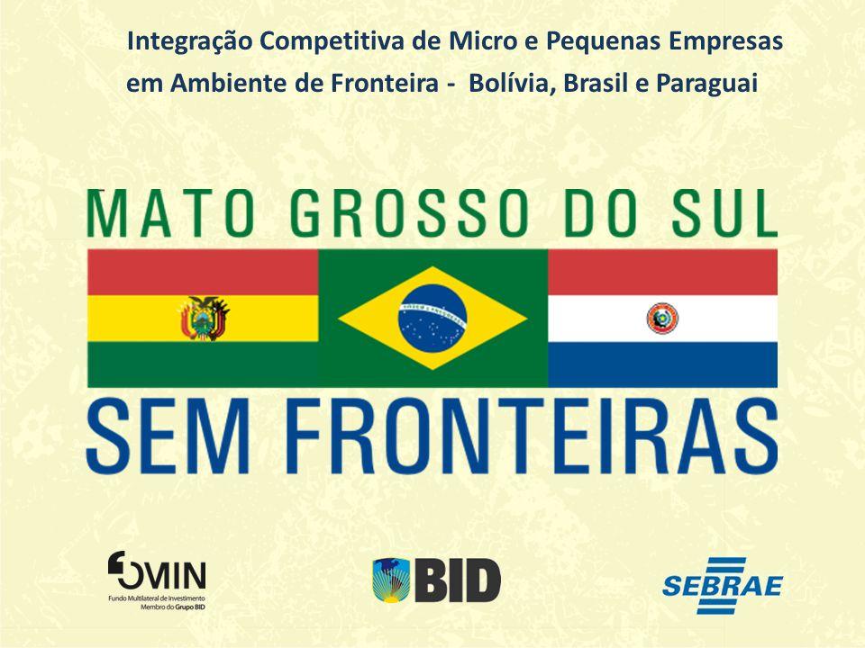 Integração Competitiva de Micro e Pequenas Empresas
