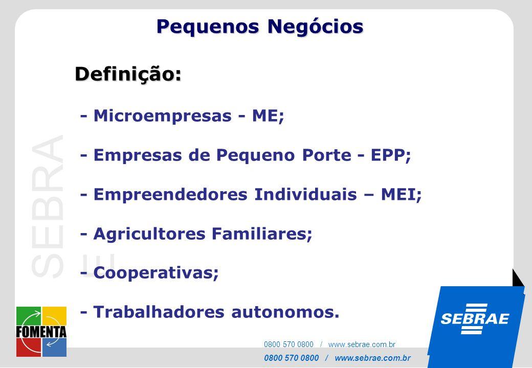SEBRAE Pequenos Negócios Definição: - Microempresas - ME;