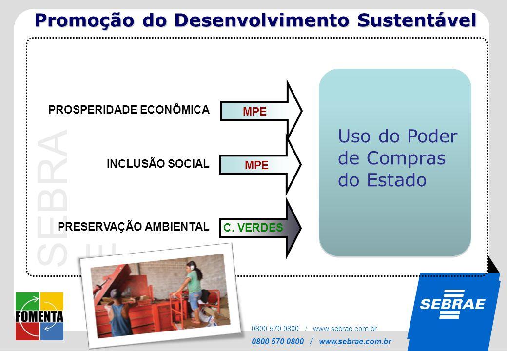Promoção do Desenvolvimento Sustentável