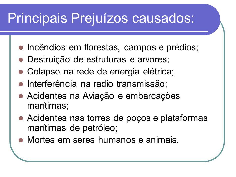 Principais Prejuízos causados: