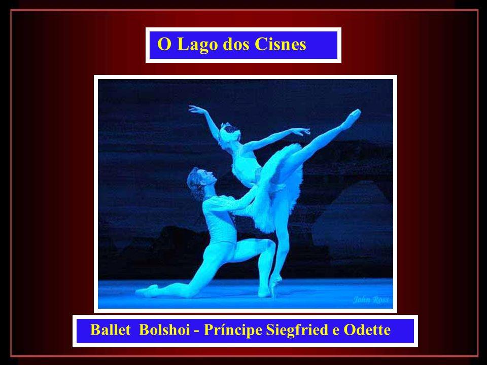 O Lago dos Cisnes Ballet Bolshoi - Príncipe Siegfried e Odette