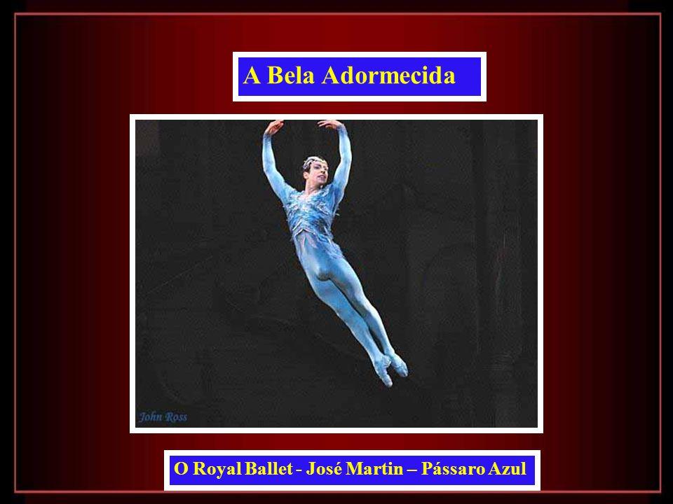 A Bela Adormecida O Royal Ballet - José Martin – Pássaro Azul