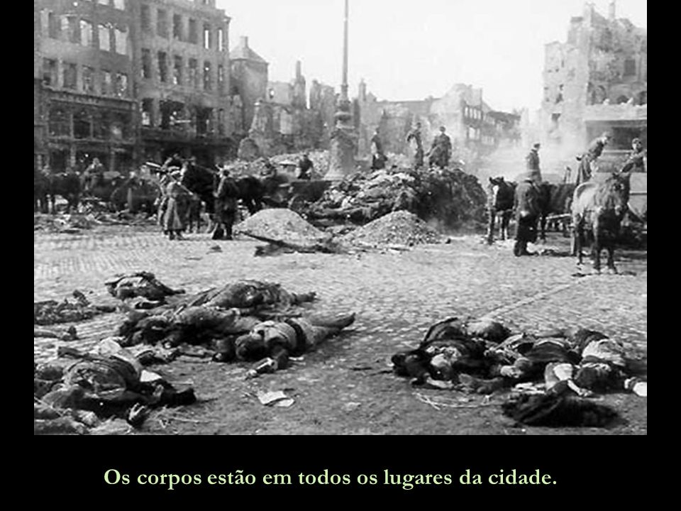 Os corpos estão em todos os lugares da cidade.