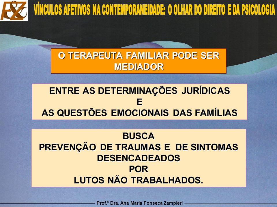 O TERAPEUTA FAMILIAR PODE SER MEDIADOR