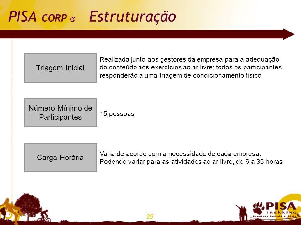 PISA CORP ® Estruturação