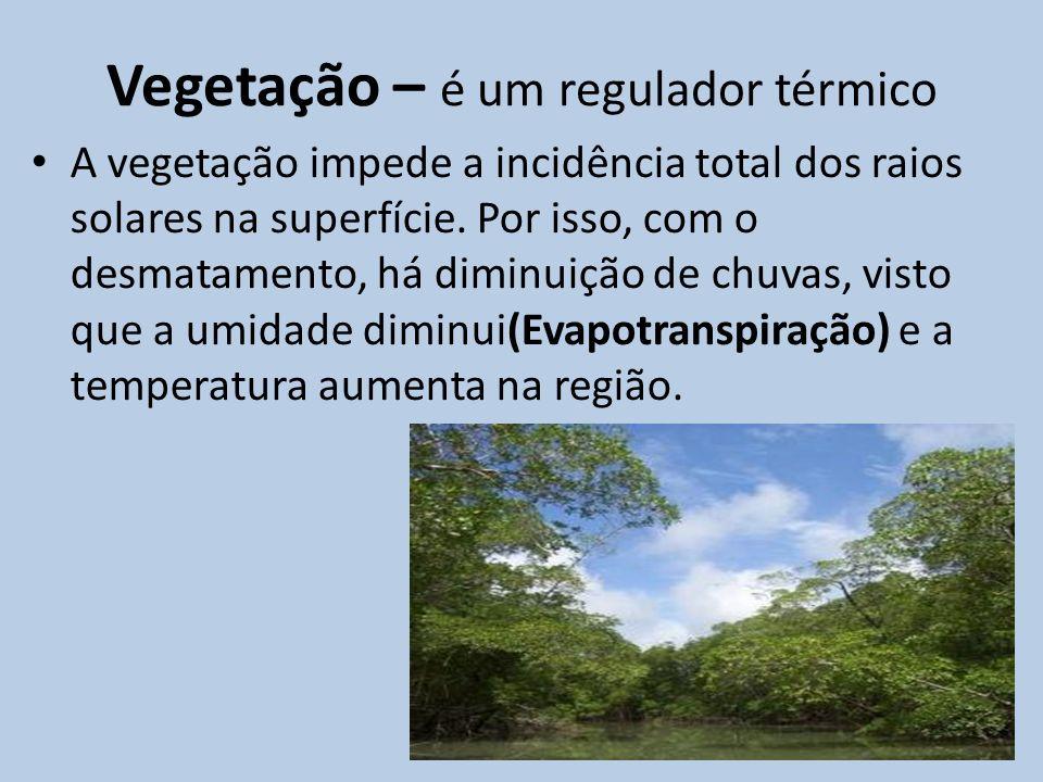Vegetação – é um regulador térmico