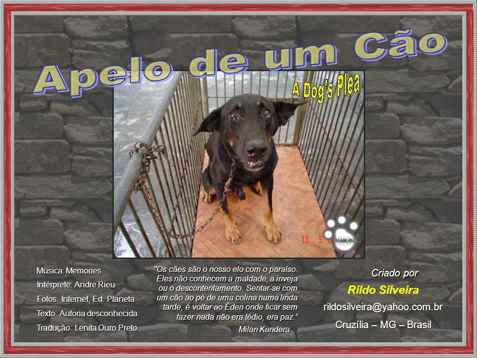 Apelo de um Cão A Dog s Plea Rildo Silveira Criado por