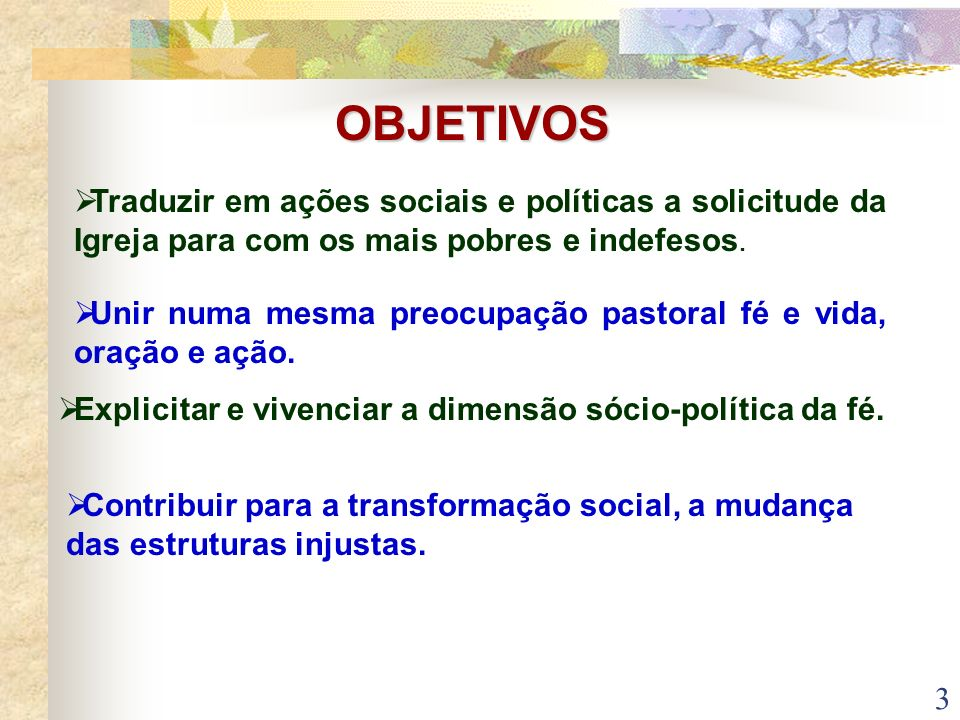 OBJETIVOS Traduzir em ações sociais e políticas a solicitude da Igreja para com os mais pobres e indefesos.