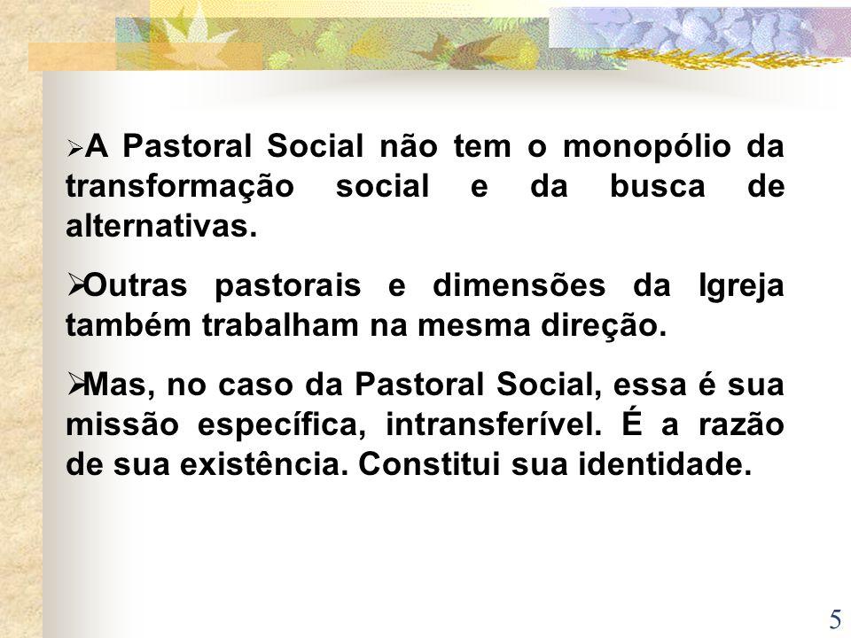 A Pastoral Social não tem o monopólio da transformação social e da busca de alternativas.