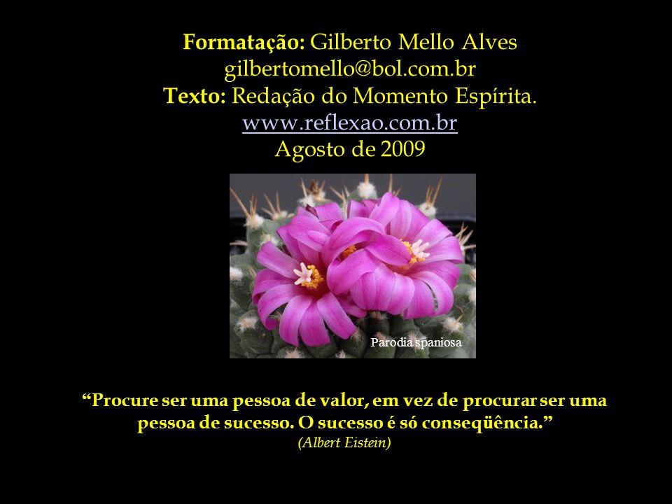 Formatação: Gilberto Mello Alves gilbertomello@bol.com.br