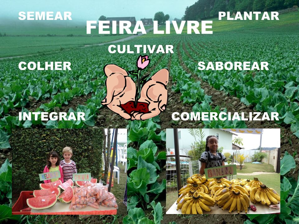 FEIRA LIVRE SEMEAR PLANTAR CULTIVAR COLHER SABOREAR