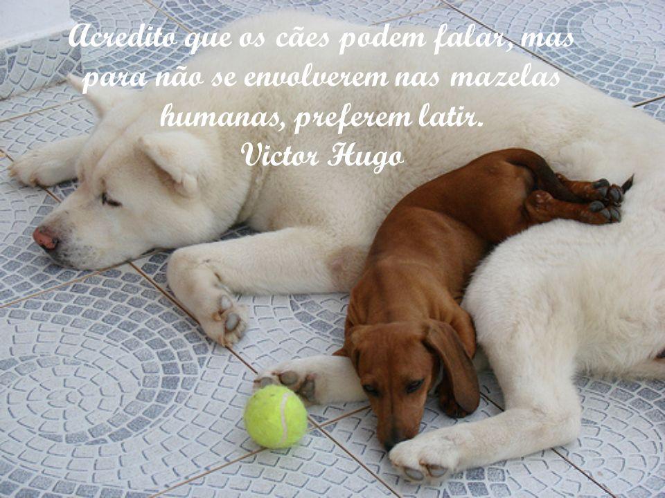 Acredito que os cães podem falar, mas para não se envolverem nas mazelas humanas, preferem latir.