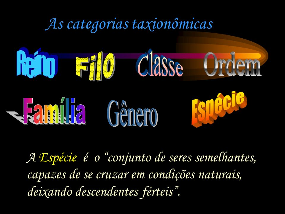 As categorias taxionômicas