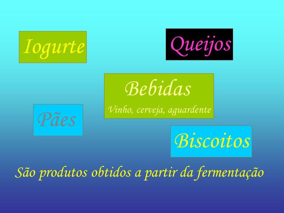 Queijos Iogurte Pães Biscoitos Bebidas