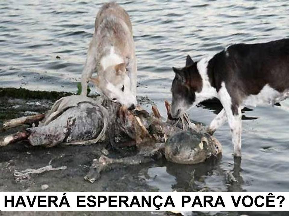 HAVERÁ ESPERANÇA PARA VOCÊ