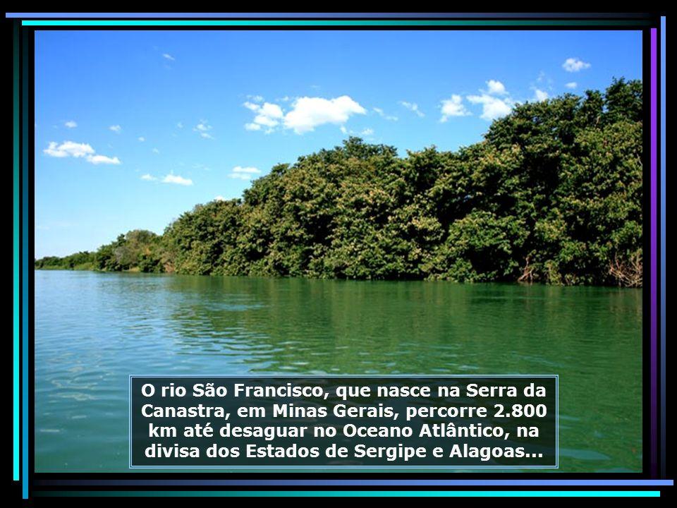 IMG_6914 - PETROLINA - PASSEIO PELO RIO SÃO FRANCISCO-680