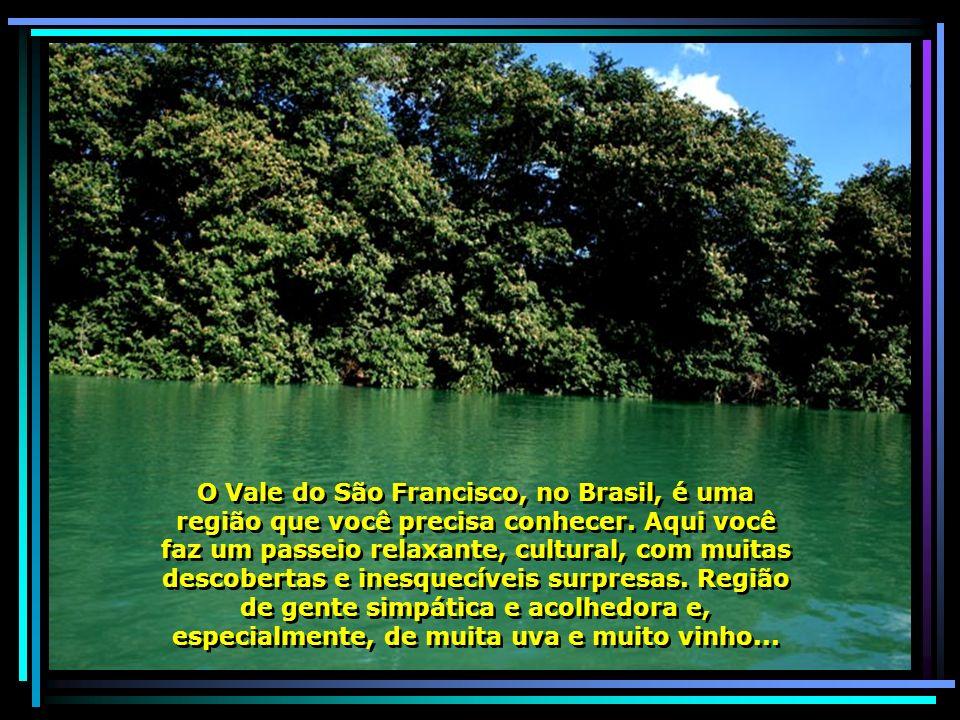 IMG_6915 - PETROLINA - PASSEIO PELO RIO SÃO FRANCISCO-680