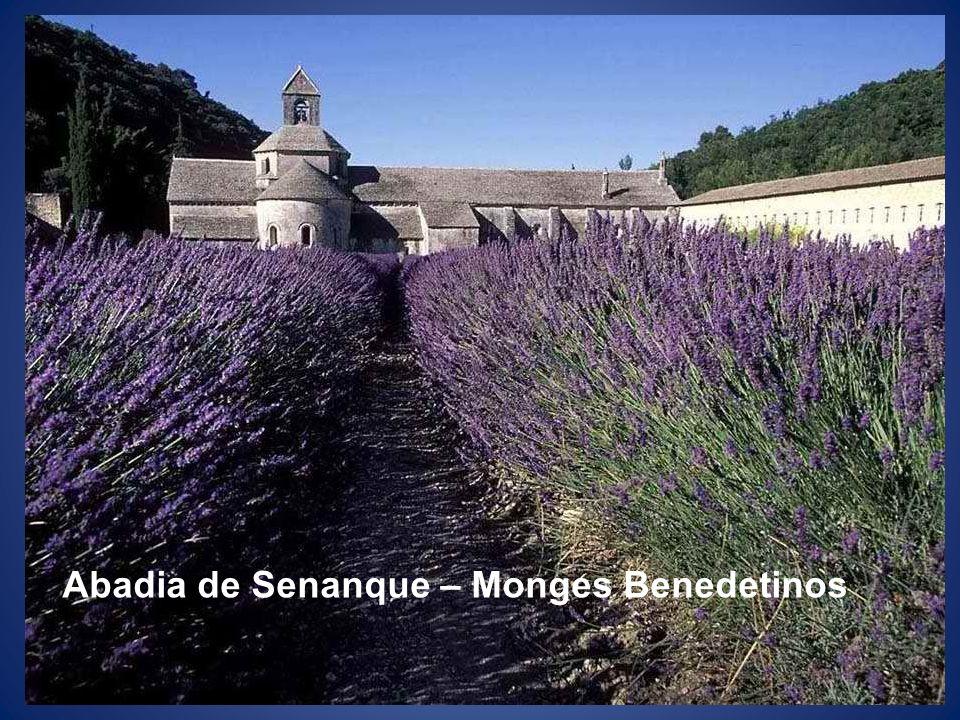 Abadia de Senanque – Monges Benedetinos