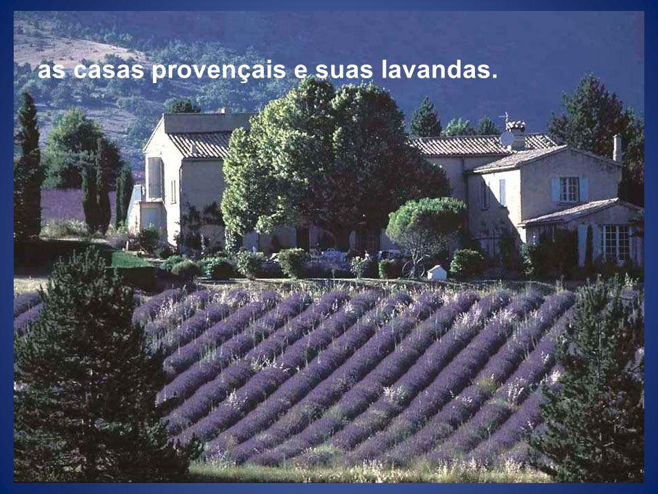 as casas provençais e suas lavandas.
