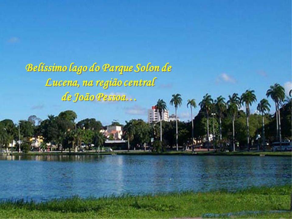 Belíssimo lago do Parque Solon de Lucena, na região central