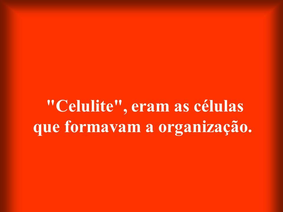 Celulite , eram as células que formavam a organização.
