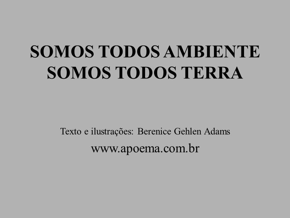 SOMOS TODOS AMBIENTE SOMOS TODOS TERRA