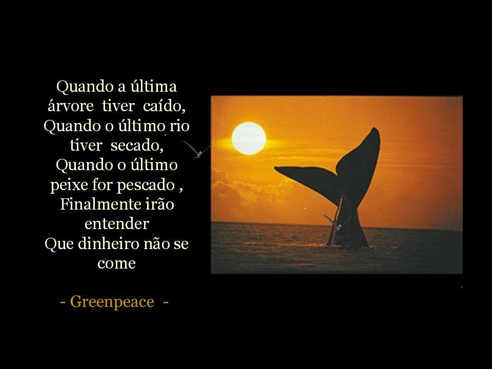 - Greenpeace -