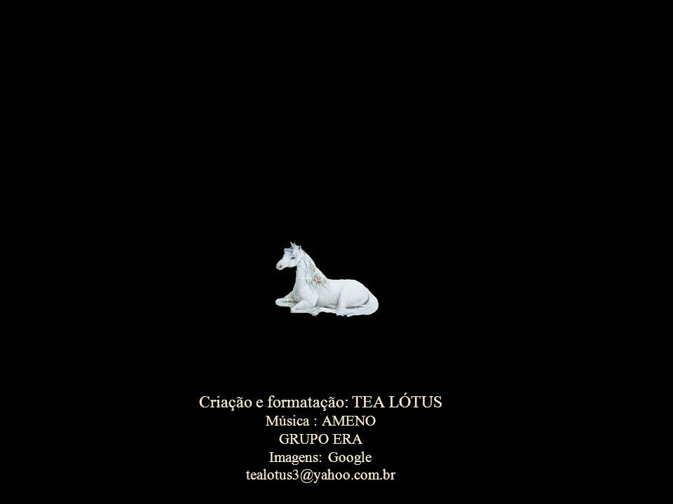 Criação e formatação: TEA LÓTUS Música : AMENO GRUPO ERA Imagens: Google tealotus3@yahoo.com.br