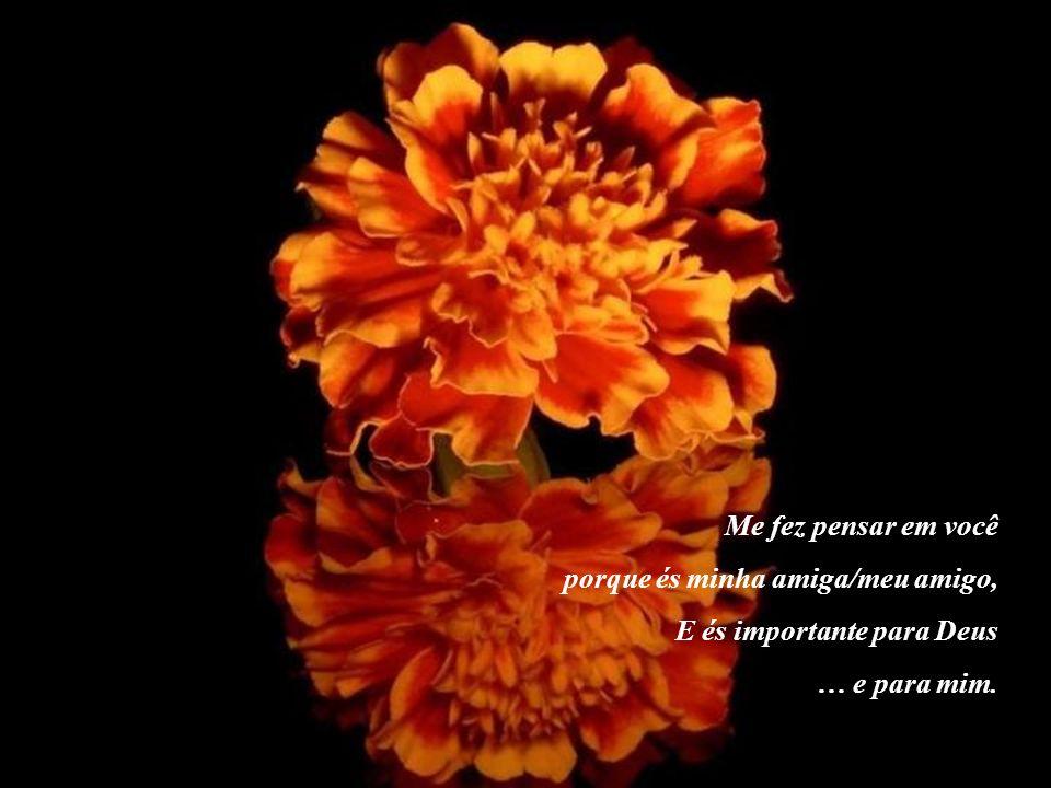 Me fez pensar em você porque és minha amiga/meu amigo, E és importante para Deus … e para mim.