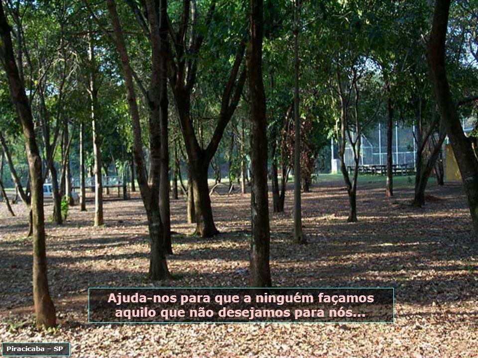 P0007814 - PIRACICABA - ENGENHO CENTRAL-700.jpg
