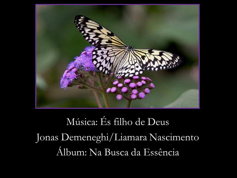 Música: És filho de Deus Jonas Demeneghi/Liamara Nascimento Álbum: Na Busca da Essência