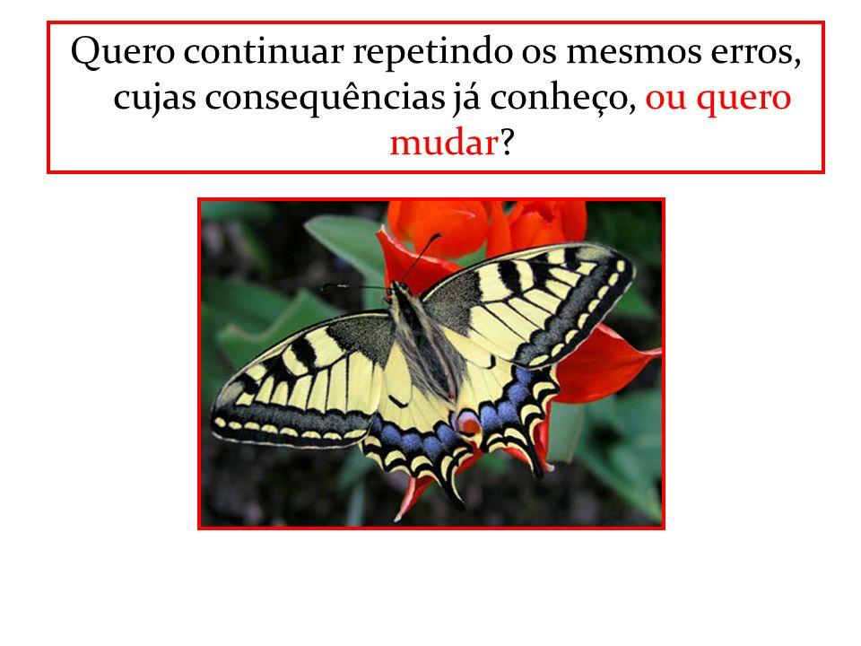 Quero continuar repetindo os mesmos erros, cujas consequências já conheço, ou quero mudar