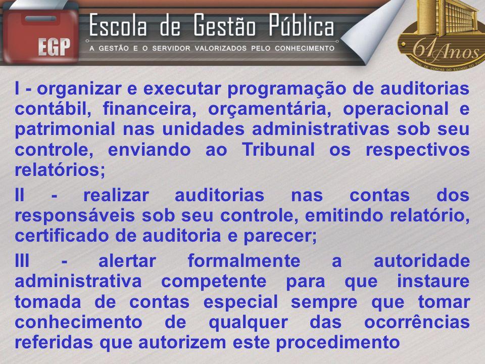I - organizar e executar programação de auditorias contábil, financeira, orçamentária, operacional e patrimonial nas unidades administrativas sob seu controle, enviando ao Tribunal os respectivos relatórios;