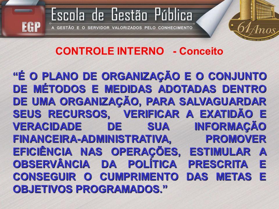 CONTROLE INTERNO - Conceito
