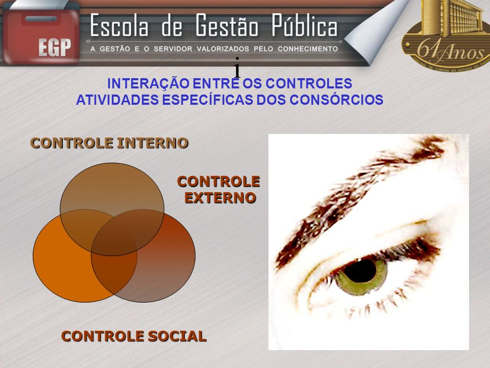 INTERAÇÃO ENTRE OS CONTROLES ATIVIDADES ESPECÍFICAS DOS CONSÓRCIOS