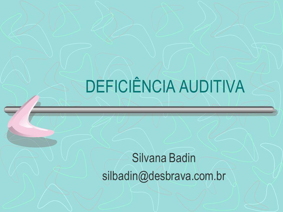 Silvana Badin silbadin@desbrava.com.br