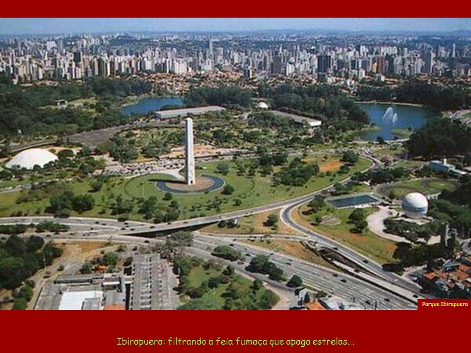 Ibirapuera: filtrando a feia fumaça que apaga estrelas...