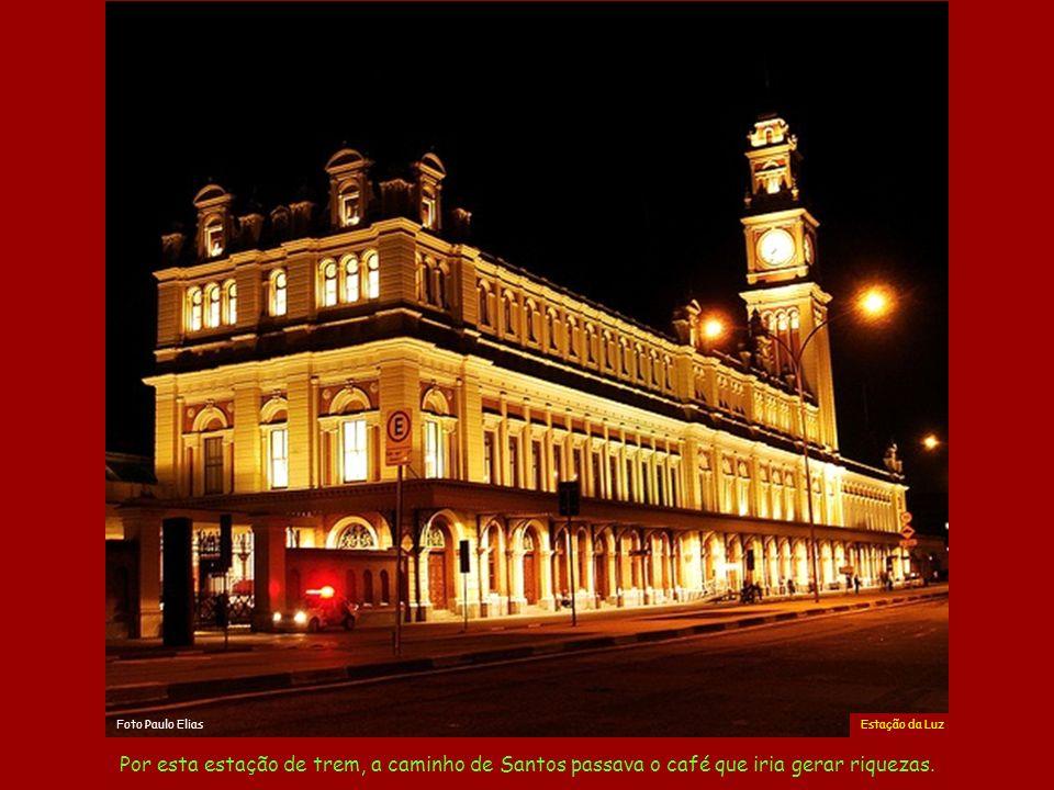Foto Paulo Elias Estação da Luz. .