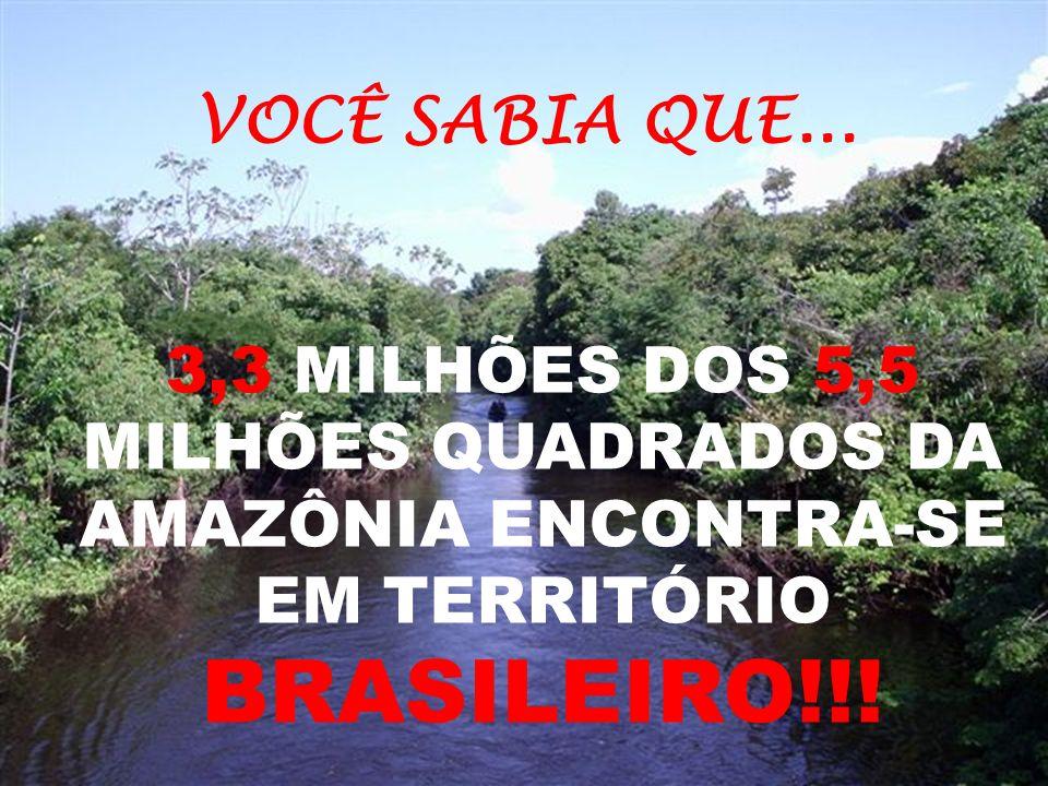 BRASILEIRO!!! VOCÊ SABIA QUE...