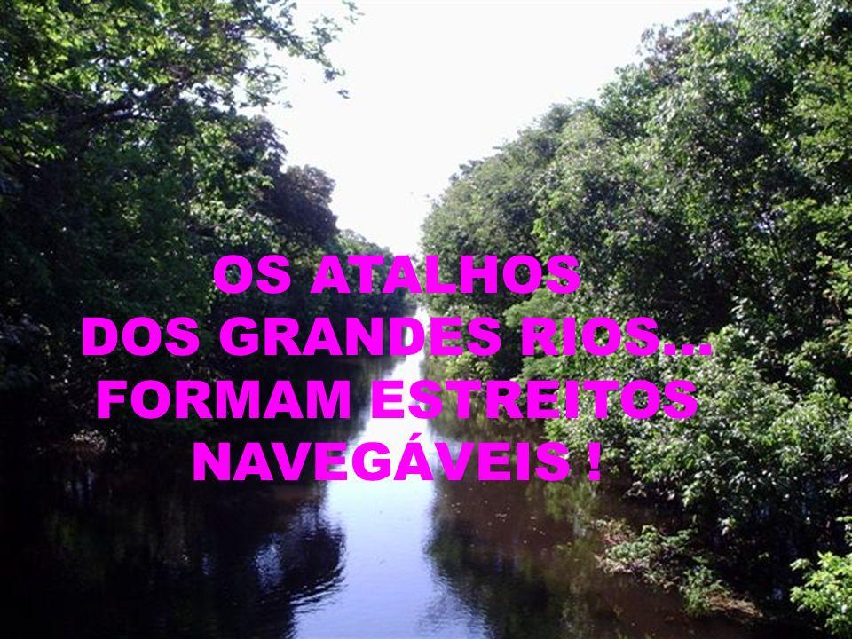 DOS GRANDES RIOS... FORMAM ESTREITOS