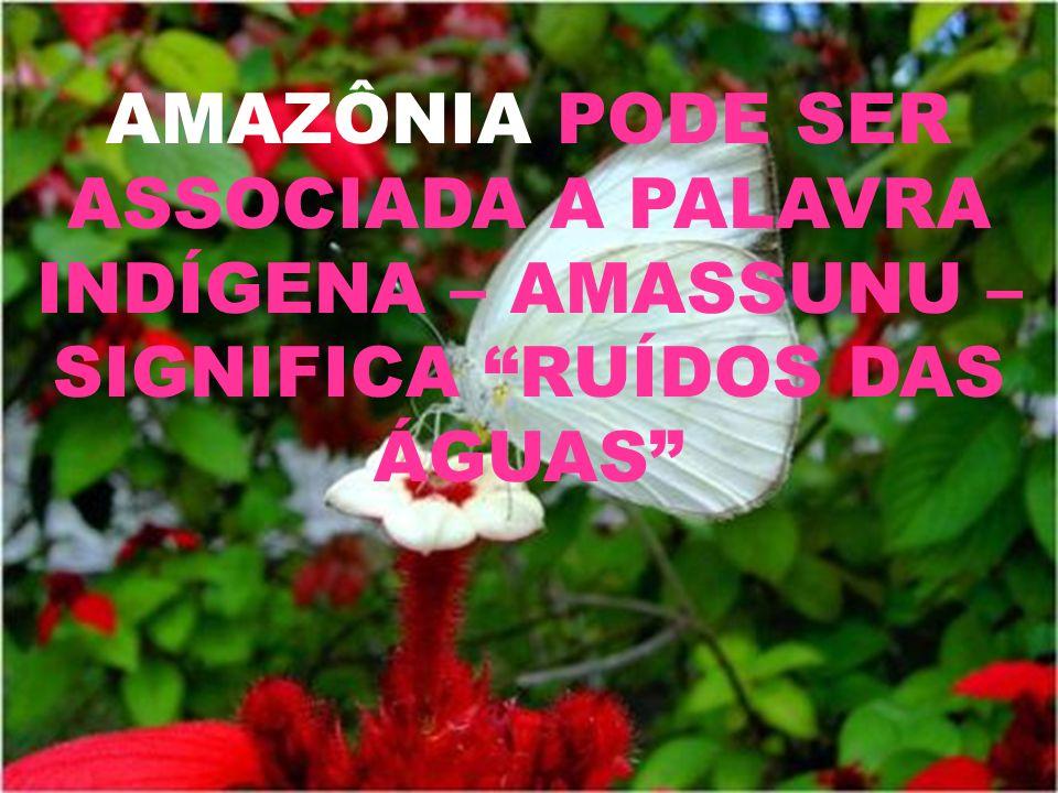 AMAZÔNIA PODE SER ASSOCIADA A PALAVRA INDÍGENA – AMASSUNU –