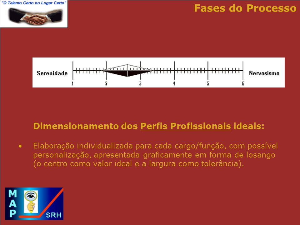 Fases do Processo Dimensionamento dos Perfis Profissionais ideais: